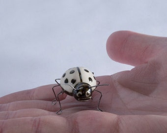 Little Porcelain Ladybug