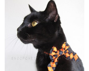SALE!  Cat Bow - The Purrrfessor - Halloween Cat Accessory
