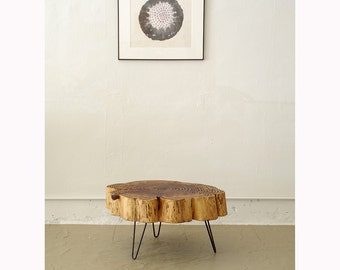 sequoia nimbus coffee table - live edge with mid century modern hairpin legs - mod - urban wood salvage