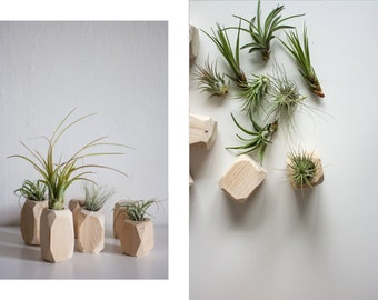 WOOD DIAMOND / planter / airplant