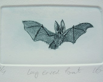 Hand made print, Drypoint Bat. Cute Long Eared Bat. Hand printed edition