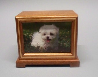 Mahogany Pet Urn,50 c.i.-Wooden Pet Urn, Urn for Pet, Photo Urn with Lacquer Finish