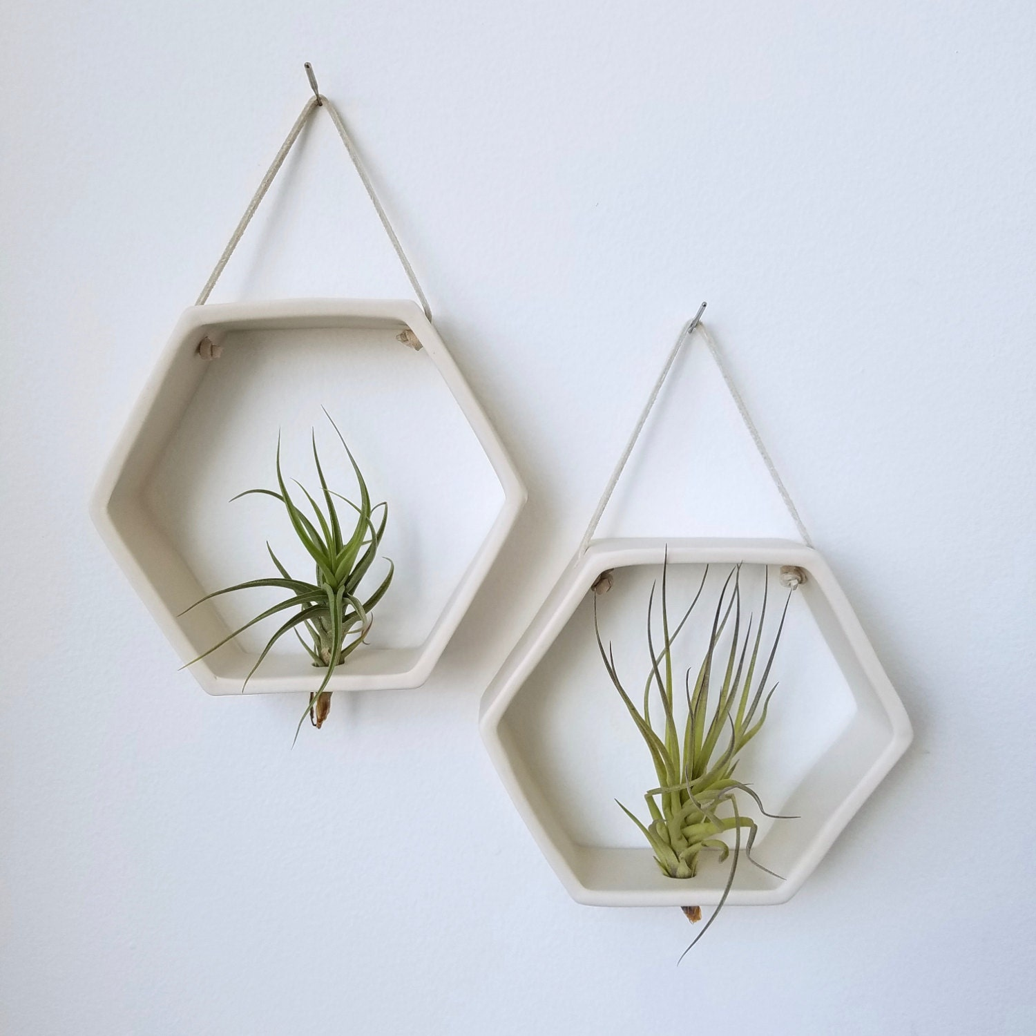 10 White Ceramic Planter