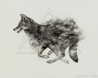 Coyote - 11 x 14 inch giclee print of original drawing