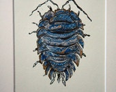Willow Patterned Woodlouse engraving and linocut combined limited edition original print