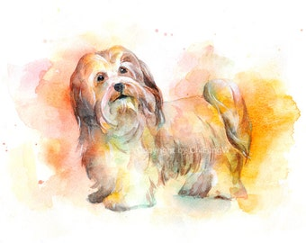 Dog, dog print, animal print, giclee, art, Watercolor, watercolor art print, Havanese ---Original watercolor giclee print