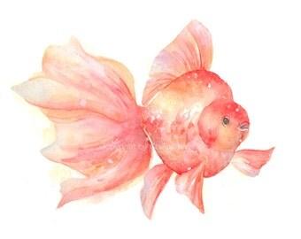 Fish, fish print, art, giclee art, watercolor, watercolor giclee, watercolor art print, Goldfish, Original watercolor,  giclee print