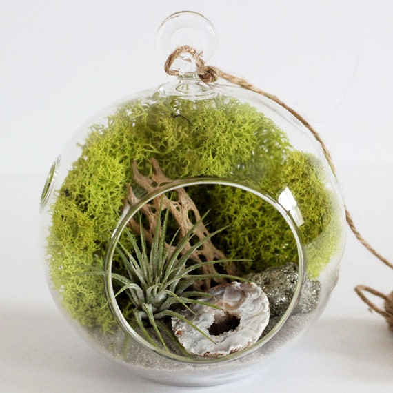 Geode and Pyrite Air Plant Terrarium Kit with Chartreuse Moss and Gray Sand || Neutral Decor || Small Hanging