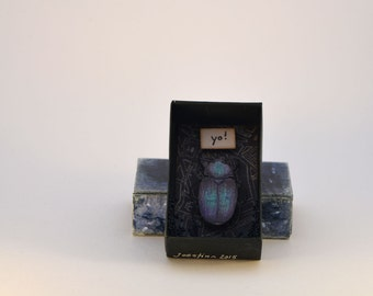 Bug in a box, scarab, beetle, matchbox, personal message, shadowbox