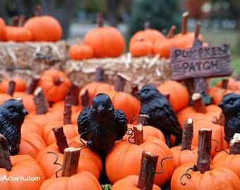 Mini Black Bird Crow Raven - Miniature Fairy Garden Fall Halloween Farm Accessory