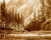 beer art, Yosemite Riverside, painted using only beer, river, Yosemite, mountains, climbing