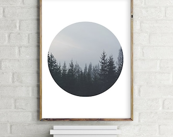 Foggy Pine Tree Forest Printable Photo Wall Art, Modern contemporary poster download (8x10 and various sizes) Gallery Wall Print