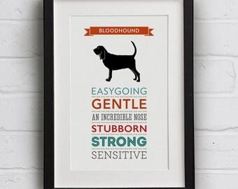 Bloodhound Dog Breed Traits Print - Bloodhound Gift