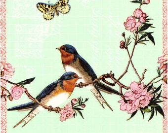 Decoupage Paper Napkins   Swallows Blossoms Butterfly Swallow Napkins Bird Napkins Floral Napkins Spring Napkins Paper Napkins for Decoupage
