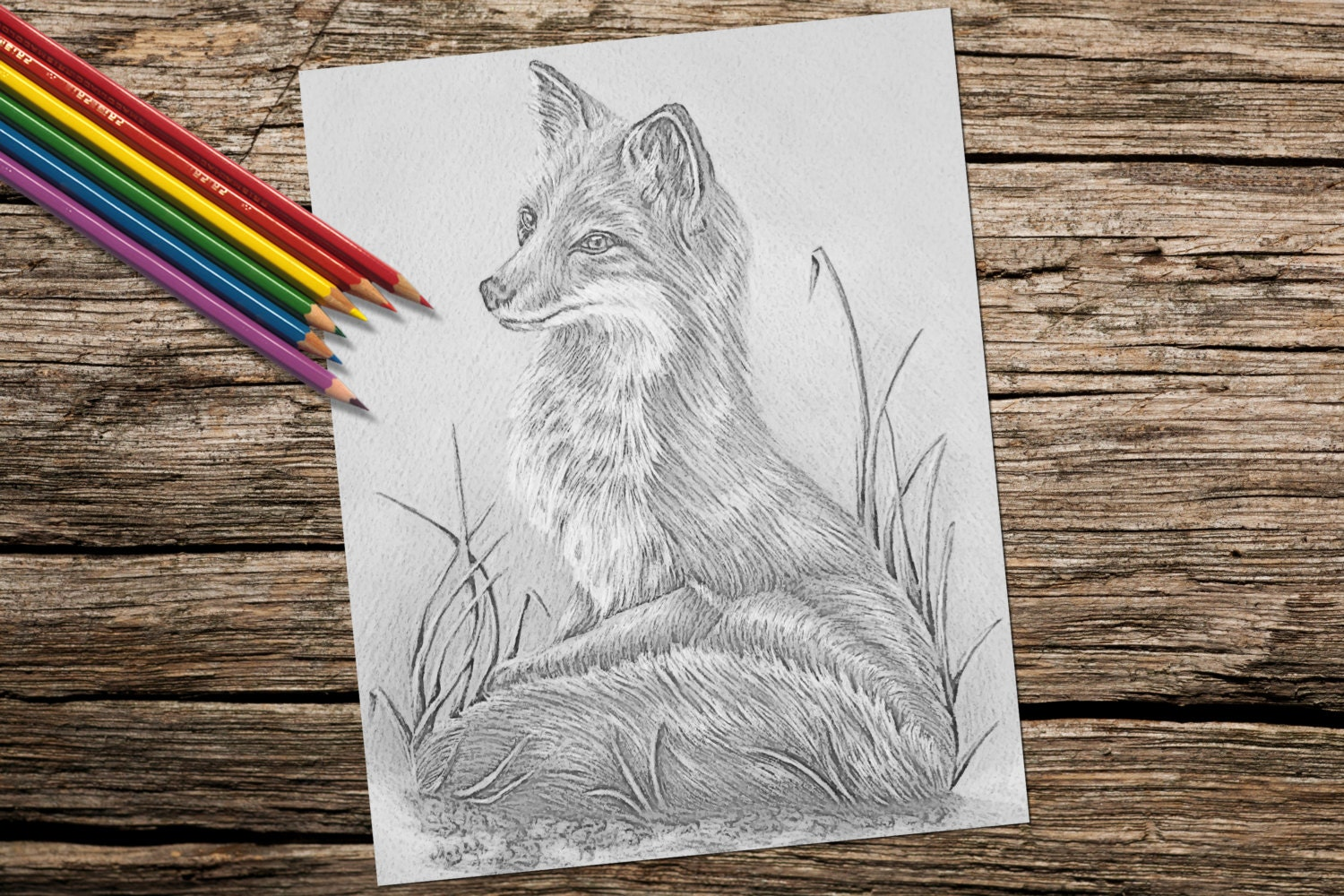 coloring page fox grayscale coloring pages instant
