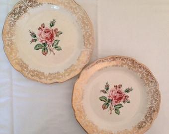 Briar Rose Plates