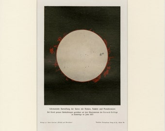 "Solar Eclipse Print - Antique Lithograph C. 1900 - Matted 11x14"" -Sun Prominence - Astronomy Wall Art"