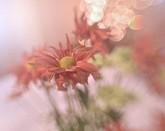 """Fine Art Digital Download """"Fall Twirl"""""""