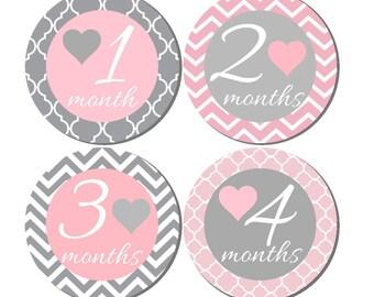 Milestone Sticker- Baby Month Stickers- Baby Girl Month Stickers- Monthly Stickers- 12 month stickers- Milestone Baby Month Stickers- G38