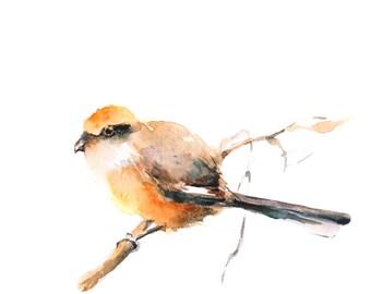 Bird Watercolor Painting Art Print, Yellow Bird Painting, Bird Illustration, Wall Art, Bird Art