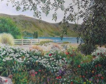 Garden at Lake Tekapo