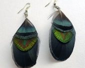Peacock Shell Feather Dangle Earrings, green and gold feather earrings, jewellery for her