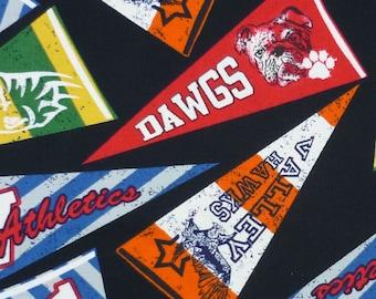 Fabric Fat Quarter – Sports Team Pennant - Timeless Treasures - Black - FQ