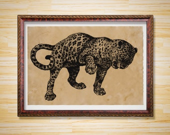 Big cat illustration Leopard print Animal poster
