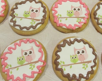 12 Baby Shower Owl sugar cookies