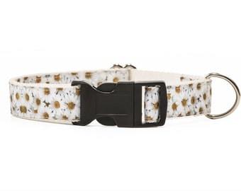 Flower dog collar. Daisies Dog Collar. White Dog Collar. Girly Dog Collar. Adjustable Collar.