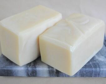 Aloe Vera and Avocado Butter TTYYL Bar Soap