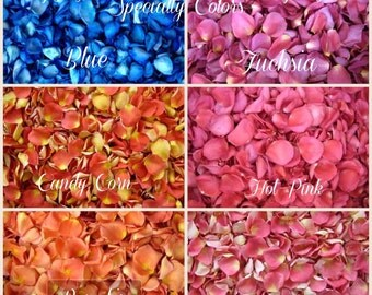 8 Cups Specialty Colors Freeze Dried Rose Petals - Eco Friendly Rose Petals for Weddings