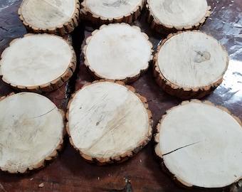 10 pieces /  6-7 inch Sassafras slices