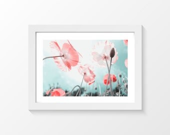 """Pink poppy #2 / Macro pink blue Printable art home decor downloadable art to print at home or at a print shop / A3 and 11"""" x 17"""""""