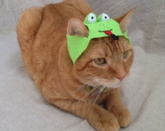 Frog Hats for Cats