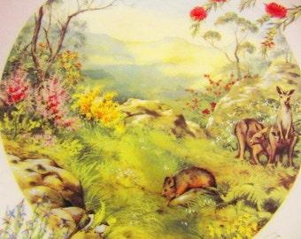 Spring ~ The Four Seasons of Australia by Deidre Hunt
