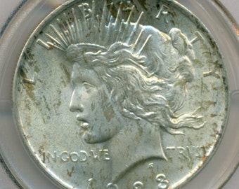 PCGS Coin 1923 Peace Silver Dollar MS64