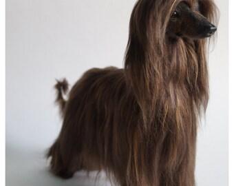 Afghan hound/Afghan hound art/Afghan /Realistic animal/Borzoi/Needle felted animal