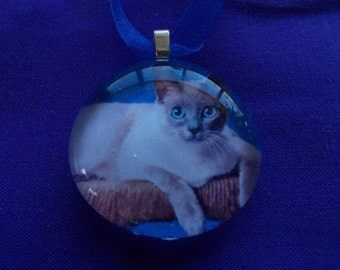Personalized Ornament - Hang Your Favorite Pet