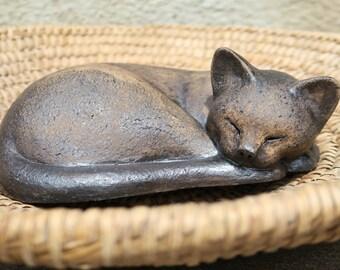 The sleeping kitten