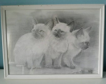 Framed kitten pencil drawing!