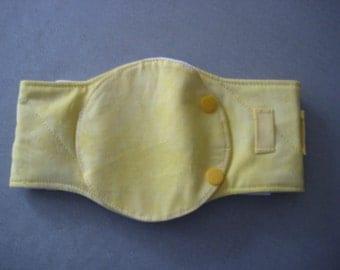 Gastric feeding tube protective band