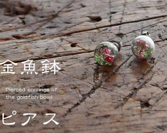 Goldfish bowl pierced earrings*金魚鉢ピアス
