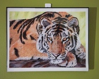 Resting Tiger Wildlife Animal - Art Print