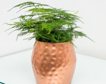 Dimpled Copper Planter, Plant Pot