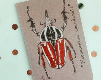 Original Hand painted Moleskine, illustrated Mecynorhina Ugandensis, Bette Bug, illustrated Notebook, lined pages, Mini Pocket Journal