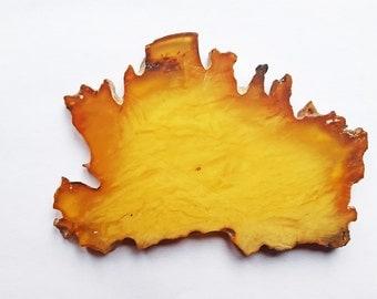 Natural Baltic Amber Stone 31g