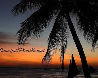 Sunset Photography - Landscape Photography - Palm Tree photography - Philippines Photograph - Original Fine Art - Framed Photography