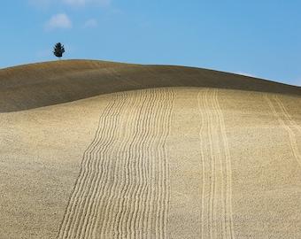 Italy Photography-Fine Art Photography-Italy-Art Print Decor-Wall Print-Home/Wall Decor-Countryside-Landscape-Tuscany