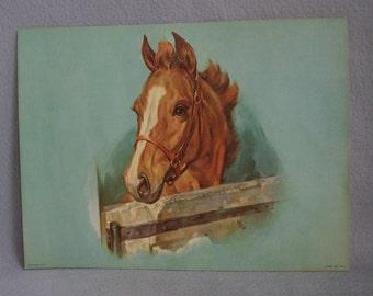 Framed Vintage D.A.C.  N.Y. Horse Lithograph